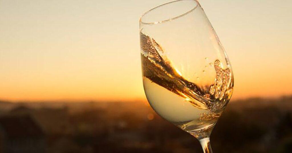 Autumn season wines