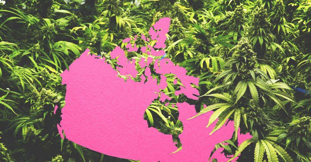 Canada's cannabis-friendly provinces