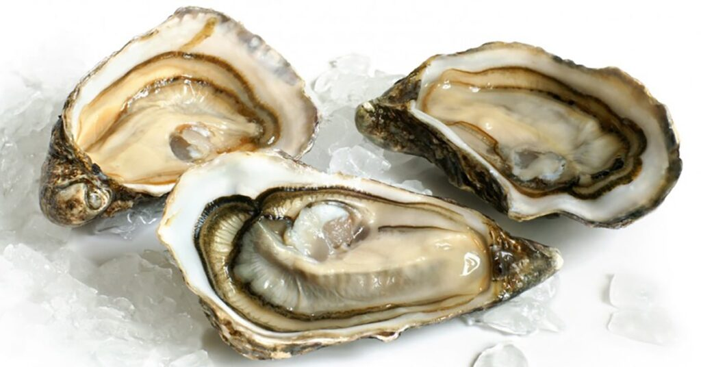 Outbreak of Vibrio parahaemolyticus infections linked to shellfish
