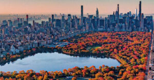 most fun activities to do in NYC