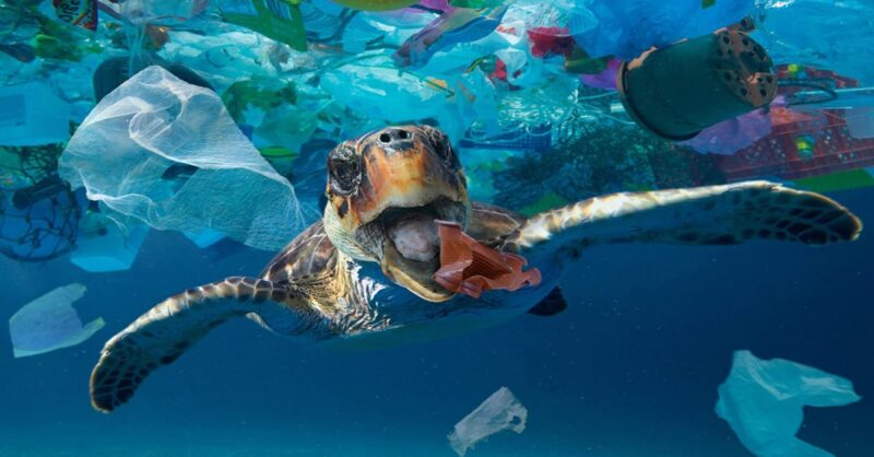 Canada-banning-single-use-plastics