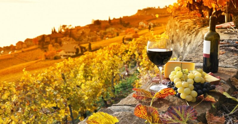 Five-impressive-wines-for-Fall-min