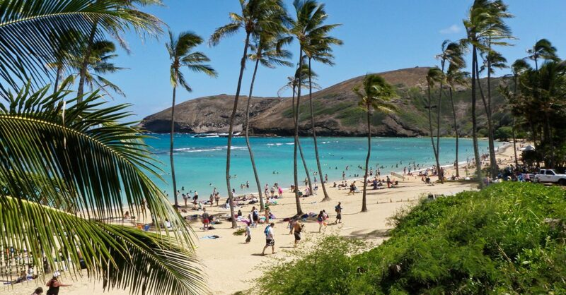 flights to Hawaii