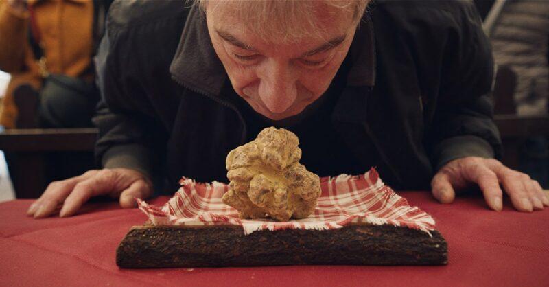 ] The precious truffle